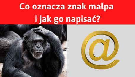 Małpa znak i symbol at @